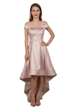 Miss Anne 219025 Champagne formal dress $250 Size 10 Last one left