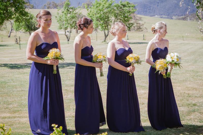 JadeDave wedding 1